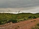 TBD Pedregosa  40.36 Acres Road - Photo 12