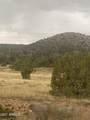 52471 Camino Gato - Photo 1