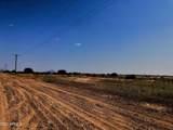 Toltec Valley West Lot 2, 41 Acres - Photo 4