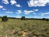 000 Harris Valley Ranch Road - Photo 6