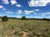 000 Harris Valley Ranch Road - Photo 6
