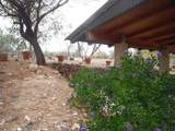 37780 Heartland Way - Photo 11
