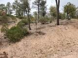 900 Monument Valley Drive - Photo 3