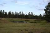 6929 Rosilda Springs Road - Photo 14