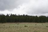 6929 Rosilda Springs Road - Photo 24