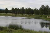 6929 Rosilda Springs Road - Photo 3