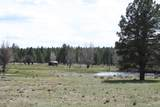 6929 Rosilda Springs Road - Photo 40