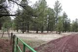 6929 Rosilda Springs Road - Photo 47
