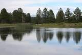 6929 Rosilda Springs Road - Photo 9