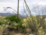 33651 Mountain View Road - Photo 49