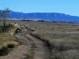 1412 Sonata Trail - Photo 6