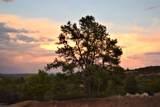 16890 Blue Sky Drive - Photo 60
