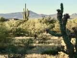 13XXX Lone Mountain Road - Photo 5