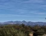 15400 blk Windstone Trail - Photo 1