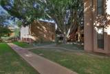 3131 Cochise Drive - Photo 18