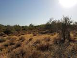7499 Sonoran Trail - Photo 21