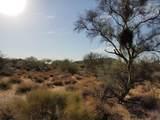 7499 Sonoran Trail - Photo 43