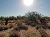 7499 Sonoran Trail - Photo 49