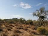7499 Sonoran Trail - Photo 50
