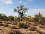 7499 Sonoran Trail - Photo 51