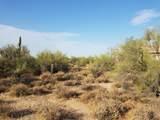 7499 Sonoran Trail - Photo 53