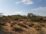 7499 Sonoran Trail - Photo 54