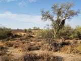 7499 Sonoran Trail - Photo 56