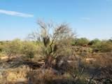7499 Sonoran Trail - Photo 6