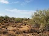 7499 Sonoran Trail - Photo 63