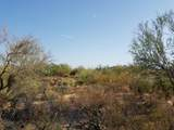 7499 Sonoran Trail - Photo 7