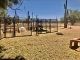 22170 Cactus Forest Road - Photo 11
