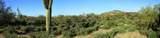 8510 Tecolote Circle - Photo 9