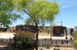 3164 Cactus Wren Street - Photo 7