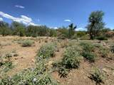 44028 Spur Cross Road - Photo 48