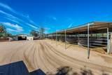 4125 Pinnacle Vista Drive - Photo 15
