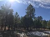 1644 Sugar Pine Drive - Photo 2