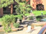 4303 Cactus Road - Photo 35