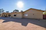 6441 Cactus Road - Photo 6
