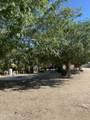2984 Horse Mesa Trail - Photo 31
