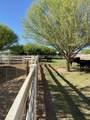2984 Horse Mesa Trail - Photo 33