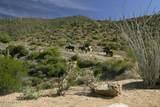 9927 Broken Spur Drive - Photo 123