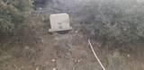 18178 Tawny Lane - Photo 2