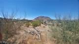 11987 Buckskin Trail - Photo 6
