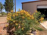 13440 Price Ranch Road - Photo 33
