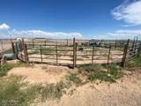 10523 Equestrian Drive - Photo 34