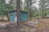 2724 Black Bear Trail - Photo 8