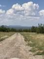 42173 Deer Camp Trail - Photo 29