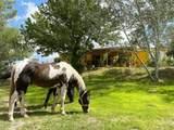 13930 Antelope Way - Photo 5