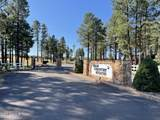 2253 Big Bear Circle - Photo 3