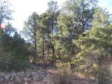 3356 Apache Drive - Photo 3